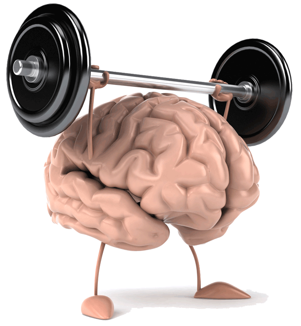 Image result for images of brain power